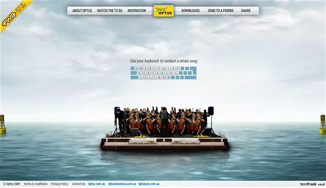 Optus Whale Song Orchestra