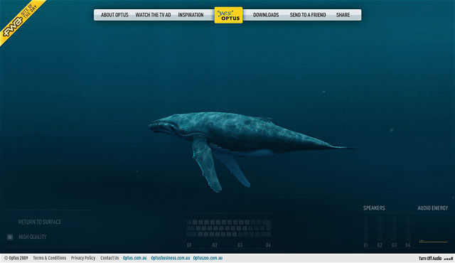 optus-whale-song-whale