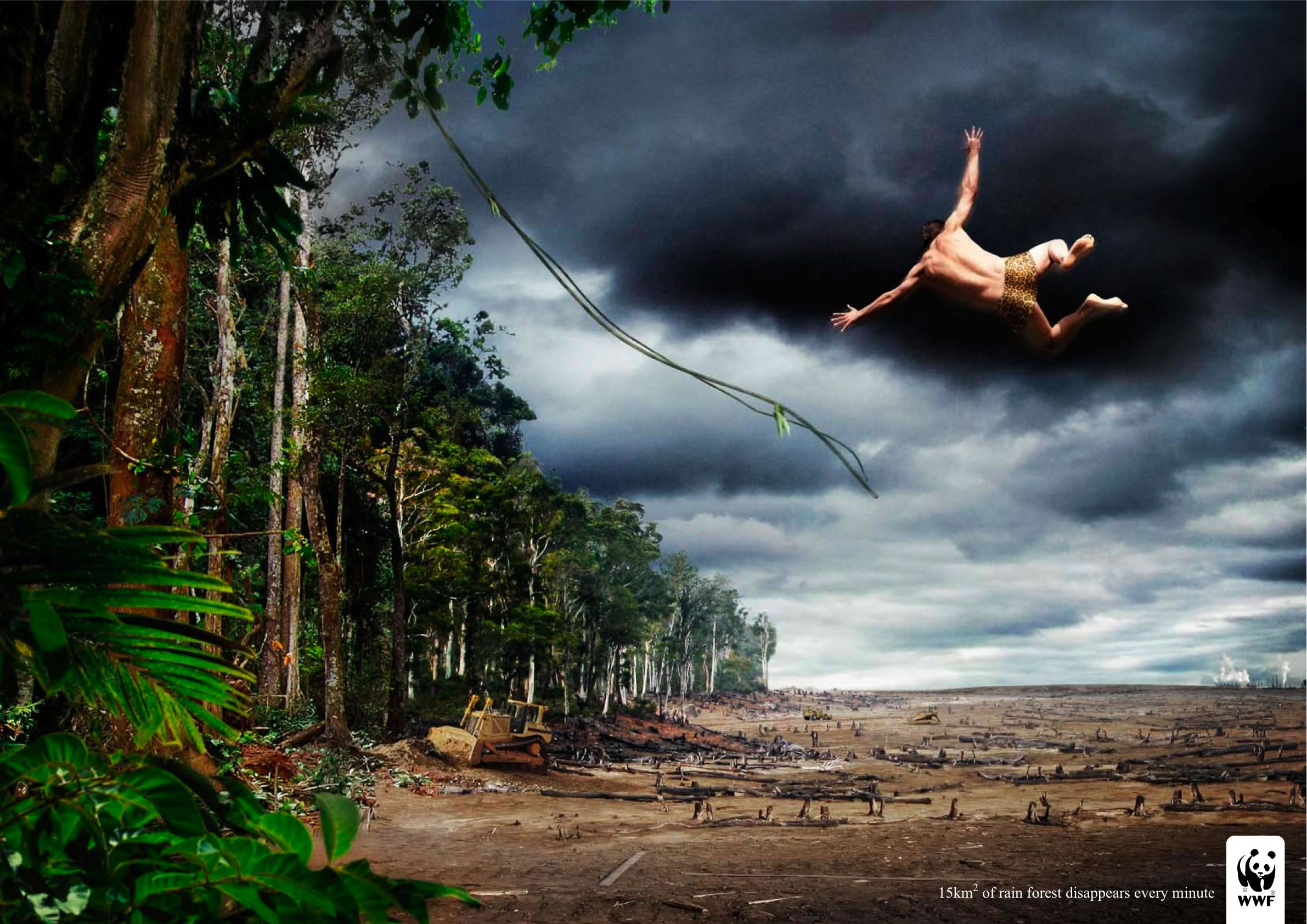 the importance of rain forest and results of its destruction If you are a tree living a forest, how to explain why it is important to protect forests.