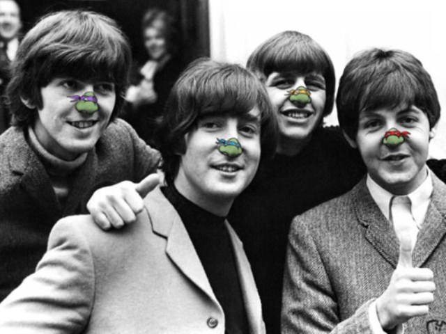 Beatles Turtle Nose